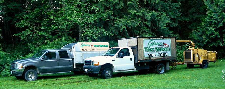 Gibsons Tree Service Trucks